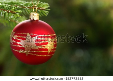Christmas ornament hanging on a branch. Selective focus, shallow DOF, copy space.