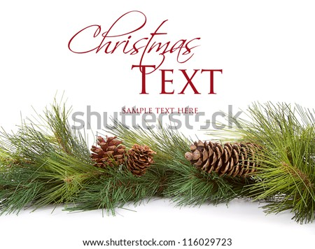 Christmas pine branches and pine cones on white background