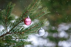 Christmas pink and silver balls on a Christmas tree branch over blurred background. Space for text. Snow
