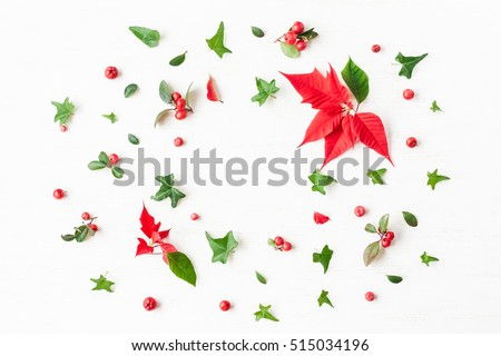 Christmas poinsettia. Frame made of traditional christmas plants. Flat lay, top view