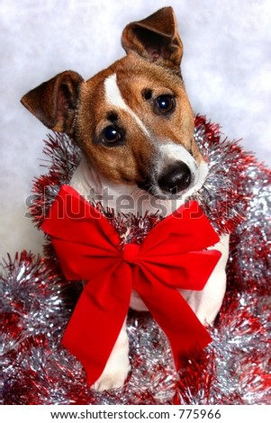 Christmas puppy with red bow and garland