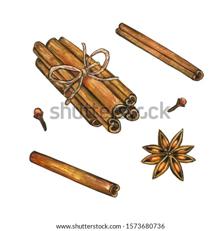 Christmas spices. Cinnamon, star anise, clove. Hand drawn watercolor illustration. Isolated on white background.
