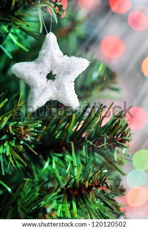 Christmas star shape on fir tree branch