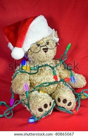 christmas teddy bear tangled in holiday lights