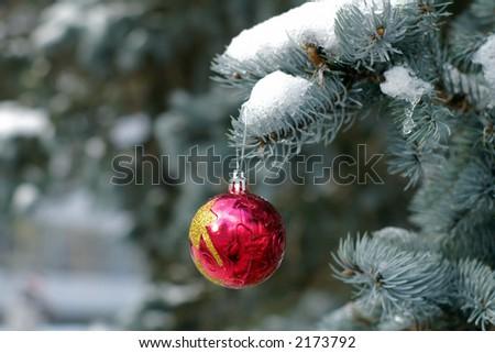christmas theme with pine and ball