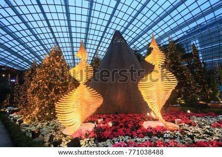 Christmas tree and light #771038488