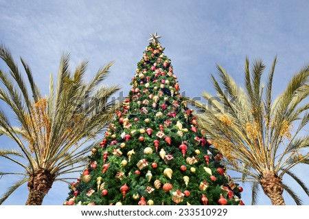 Christmas tree and tropical palm trees on sky background #233510929