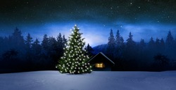 Christmas tree at night in landscape