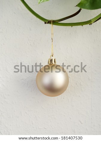 Christmas tree ball hanged on green plant close to white wall