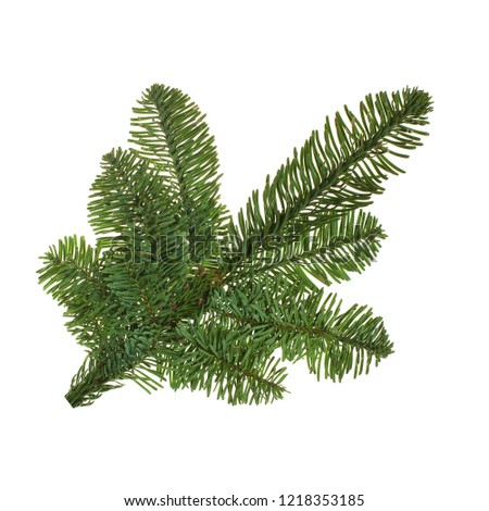 Christmas tree branch isolated on white background #1218353185