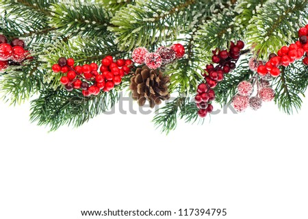 christmas tree branch with red decoration isolated on white background.