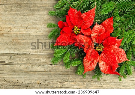christmas tree branch with red poinsettia flower on wooden background. vintage style toned picture