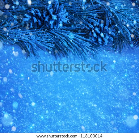 Christmas tree branches covered with snow