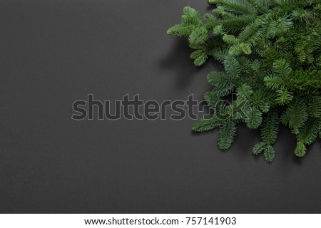 Christmas tree branches on black background