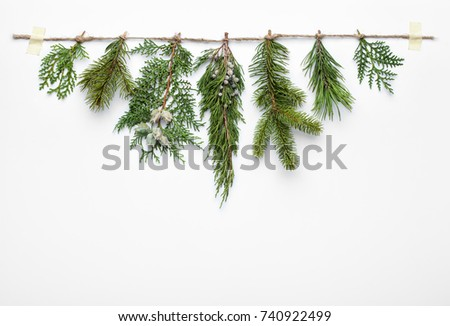 Christmas tree branches on white background #740922499