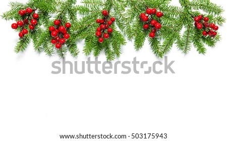 Christmas tree branches with red berries on white background. Holidays decoration banner #503175943