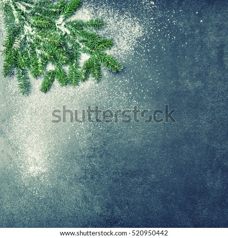 Christmas tree branches with snow. Winter holidays background. Vintage style toned picture