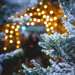 Christmas tree close-up with snow and blurred warm lights on the background. Square format.
