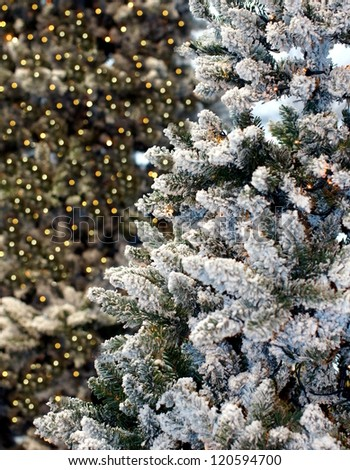 christmas tree covered with snow and sparkling christmas lights in the background