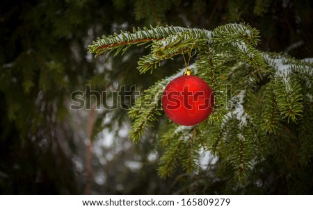 christmas-tree decorative red ball - stock photo