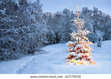 Christmas tree in snow with colored lights - stock photo