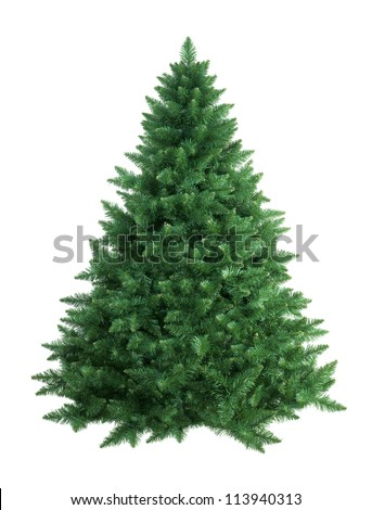 Shutterstock christmas tree isolated