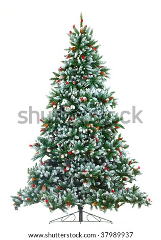 Christmas Tree. Isolated over white background