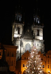 Christmas tree on Oldtown square in Prague and Týnský cathedral