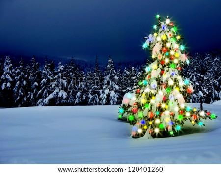 Christmas tree with lights outdoors with snow