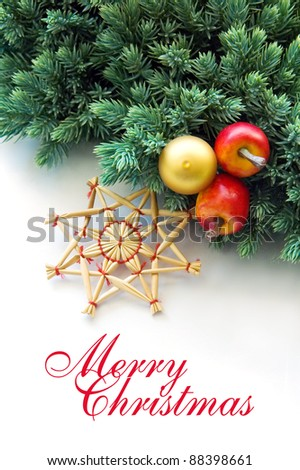 christmas wishes with conifer decoration