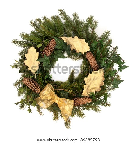 Christmas wreath of  holly, ivy, pine cones, blue spruce pine  gold bow and oak leaf sprigs isolated over white background.