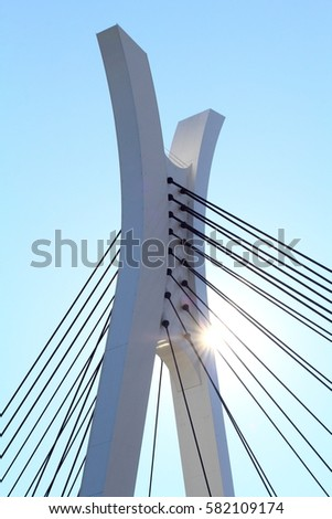 Chuo Ohashi is a bridge over the Sumida River, located in Chuo-ku, Tokyo. Structural type Two-span continuous steel diagonal bridge Bridge length 210.7 m Width 25.0 m Completion August 26, 1993 #582109174