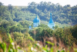 Church Domes between Treetops . Blue cupola in the forest
