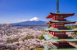 Chureito red pagoda with sakura in foreground and mount Fuji in background, Fujiyoshida, Japan