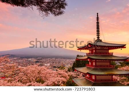 chureitopagoda with mt. fuji ストックフォト ©