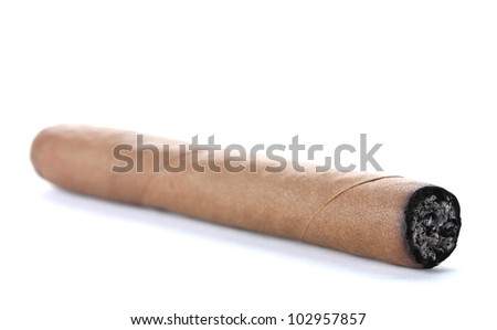 cigar isolated on white