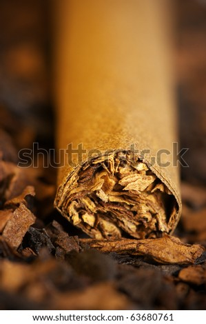 Cigar on heap of cut tobacco close-up. Selective focus on tip cigar.