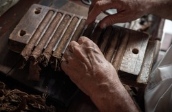 Cigar rolling or making by torcedor in cuba, Pinar del rio province