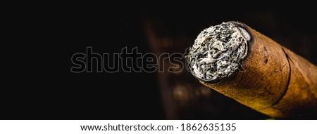 cigar tip detail, isolated on dark background ストックフォト ©