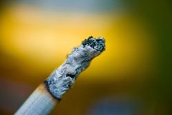 cigarette ash burning cigarette with daylight
