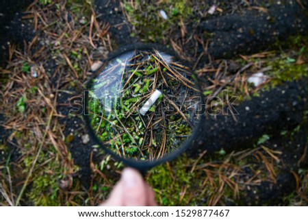 Cigarette butt lying on the asphalt and grass. The smoked cigarette is magnified through a magnifying glass. Background. Dangers of smoking.