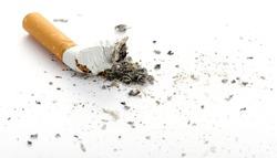 cigarette butt. Photo closeup. On white