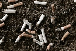 Cigarette butts in the sand dirty ashtray reason of lung cancer.Fag ends