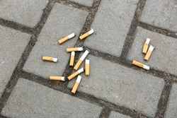 Cigarette butts on asphalt