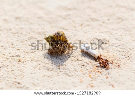 Cigarettes in the sand that affect the ecosystem.