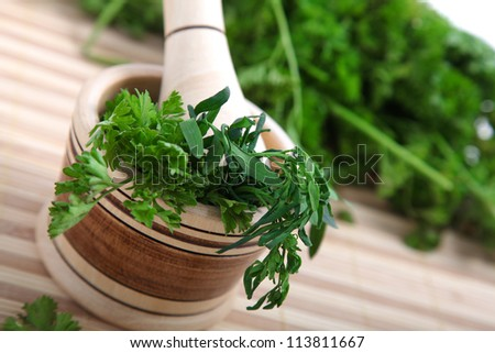 cilantro with a macerator over cilantro background