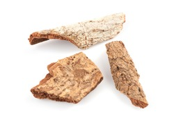 Cinnamomum bejolghota,dried Thai herb have medicinal properties and on a white background.