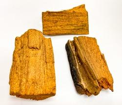 Cinnamomum porrectum, Cinnamomum parthenoxylon is in LAURACEAE family