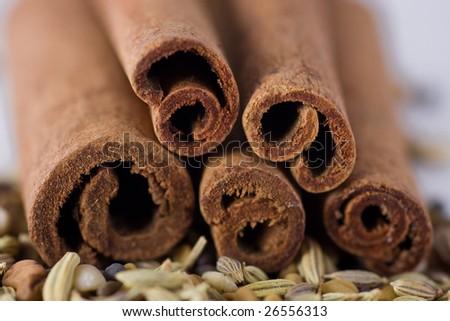 Cinnamon and spices, macro shot, shallow DOF