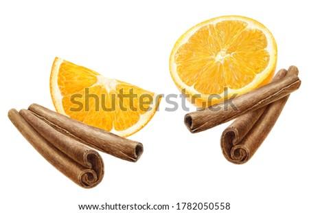 Cinnamon sticks and orange fruit slices watercolor illustration isolated on white background